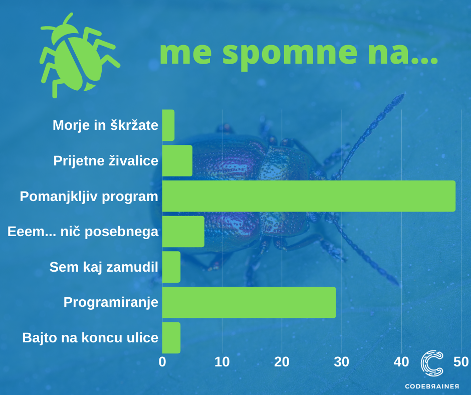 Kaj so hroščki v kodi? - CodeBrainer