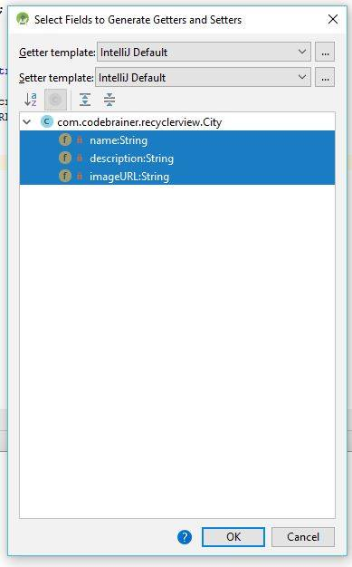 RecyclerView display data